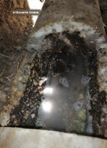 cistenie kanalizacie trnava